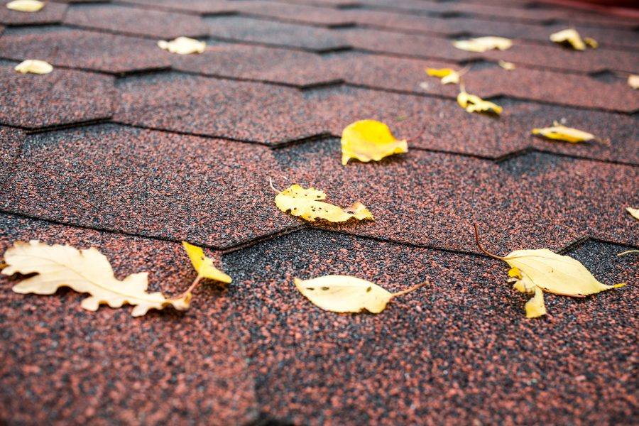 roof in the fall season